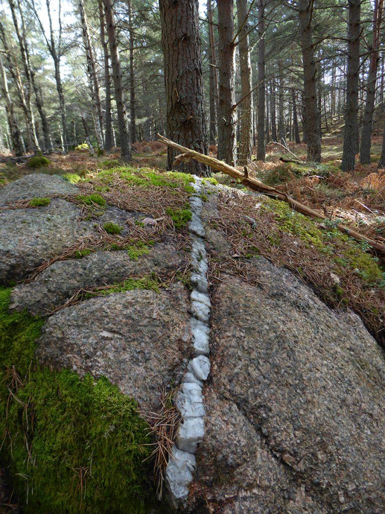 Vein in granite