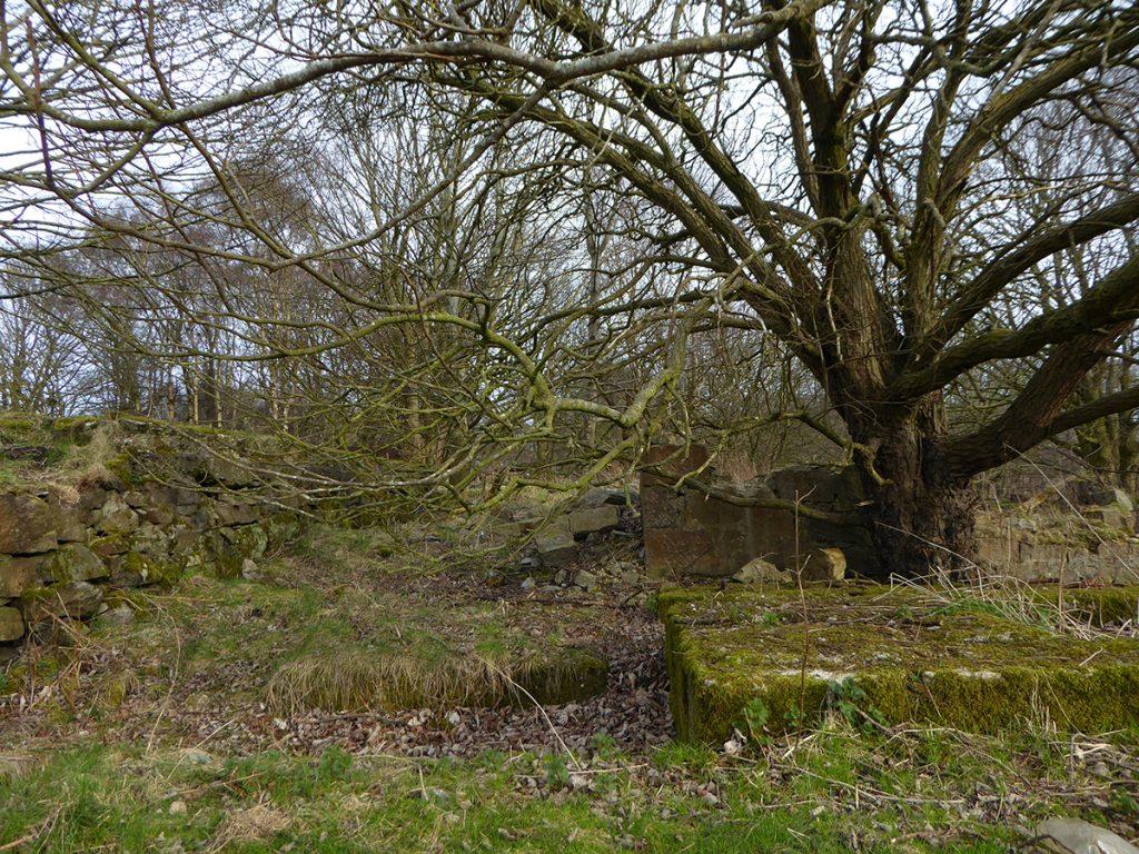 Quarry ruins 1