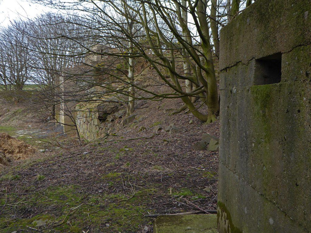 Quarry ruins 2
