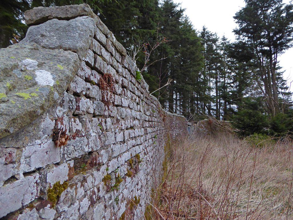 Curvy wall