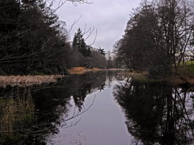 Parkhill Lake