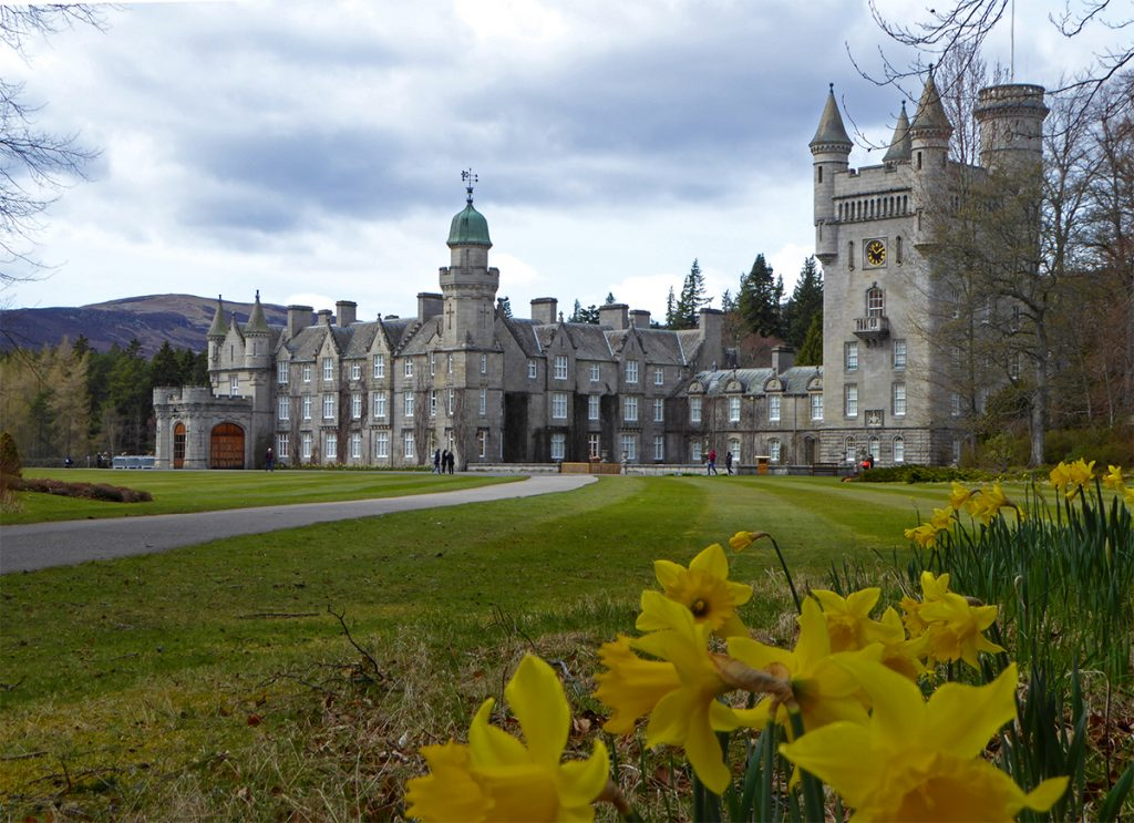 Castle n daffodils