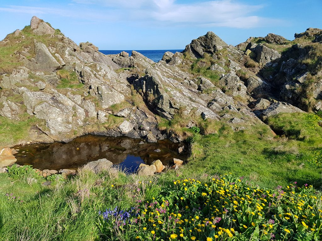 Rock pool Cove Harbour