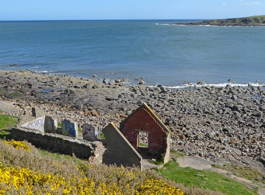 Nigg bay ruined cottage