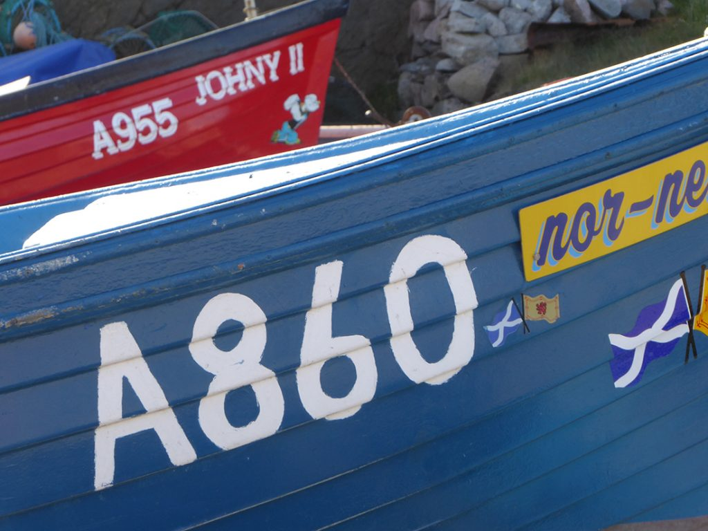 Cove Bay boat numbers