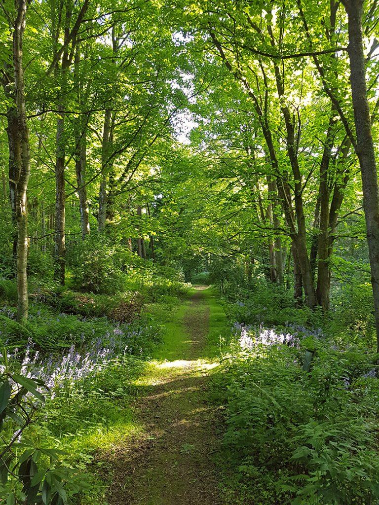 Beannachar trail
