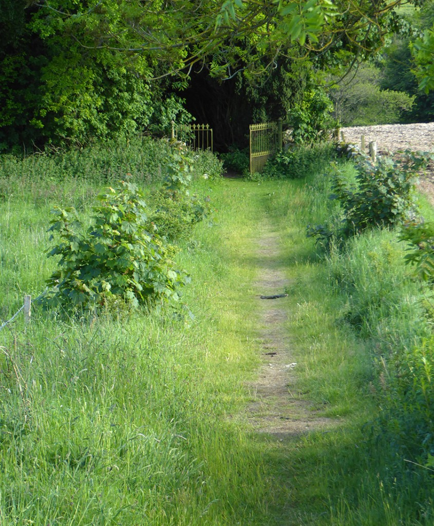 Path to St Meddan's Kirk