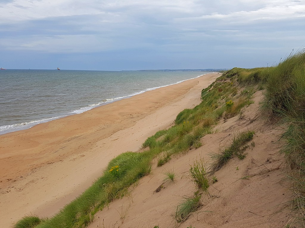 Climbing down the dune