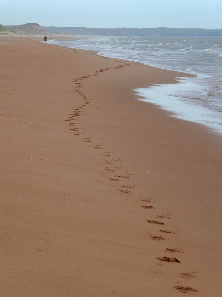 Long distance beach walker