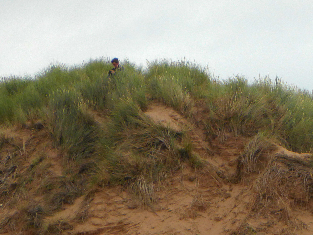 Dune lurking photographer