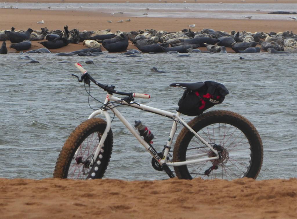 Bike se-a-lfie