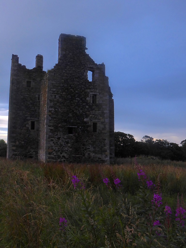 Knockhall Castle from W